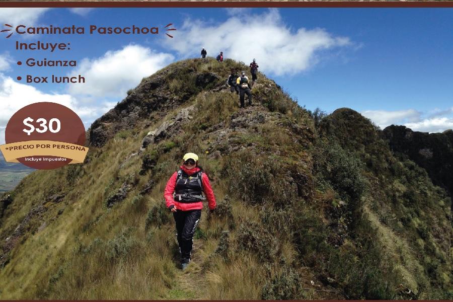 Pasochoa Papagayo